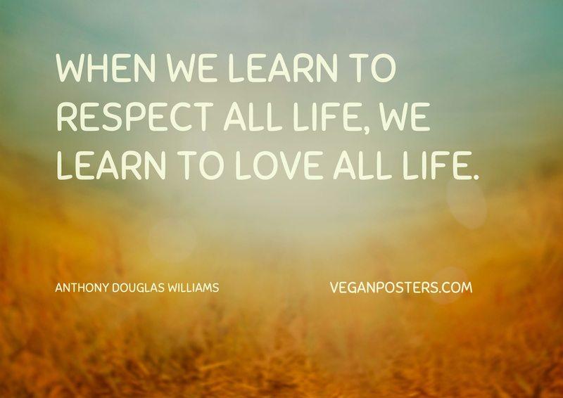 When we learn to respect all life, we learn to love all life.