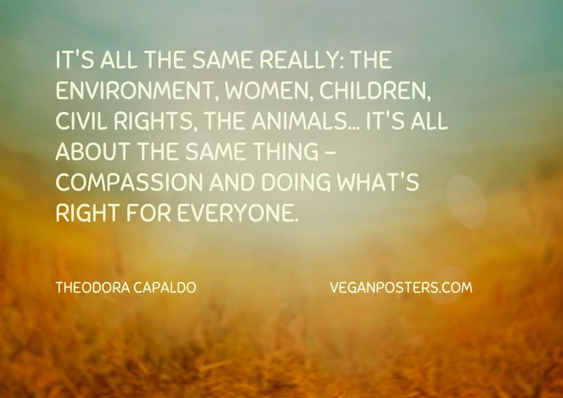 It's all the same really: the environment, women, children, civil rights, the animals... it's all about the same thing - compassion and doing what's right for everyone.