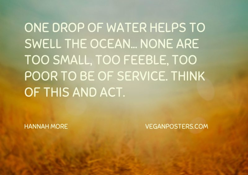 One drop of water helps to swell the ocean... none are too small, too feeble, too poor to be of service. Think of this and act.