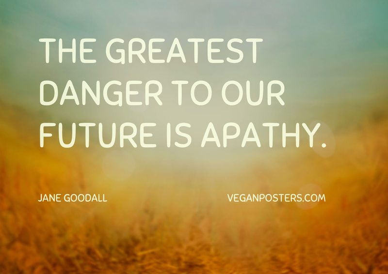 The greatest danger to our future is apathy.