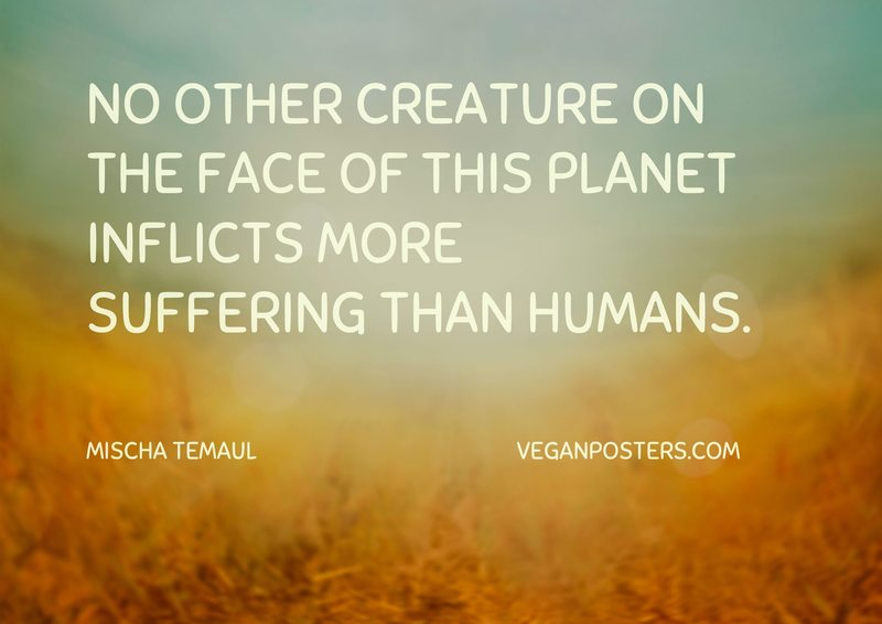 No other creature on the face of this planet inflicts more suffering than humans.