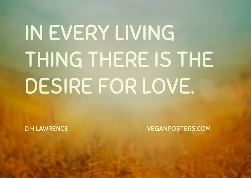 In every living thing there is the desire for love.