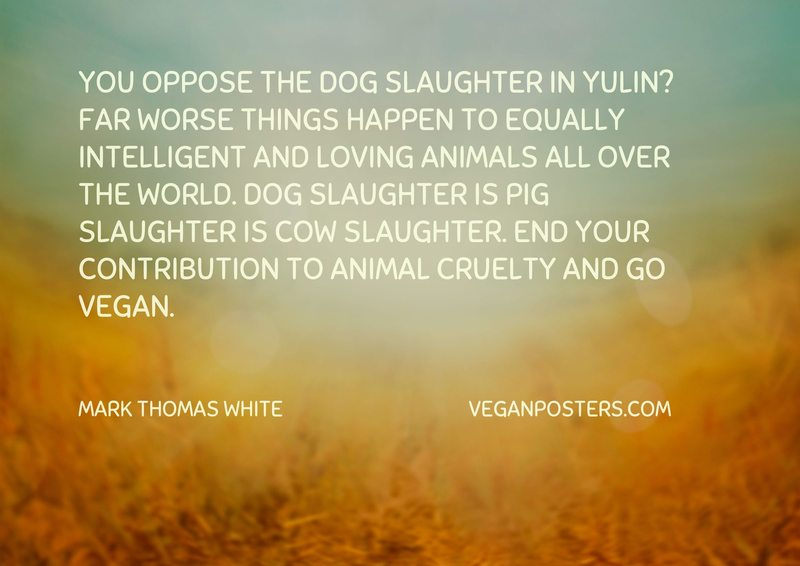 You oppose the dog slaughter in Yulin? Far worse things happen to equally intelligent and loving animals all over the world. Dog slaughter is pig slaughter is cow slaughter. End your contribution to animal cruelty and go vegan.