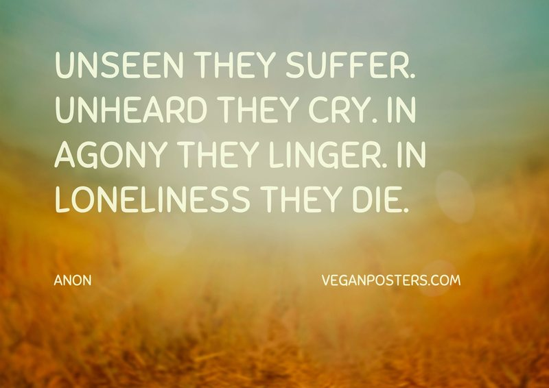 Unseen they suffer. Unheard they cry. In agony they linger. In loneliness they die.