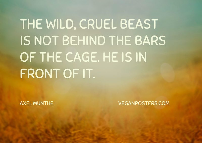 The wild, cruel beast is not behind the bars of the cage. He is in front of it.
