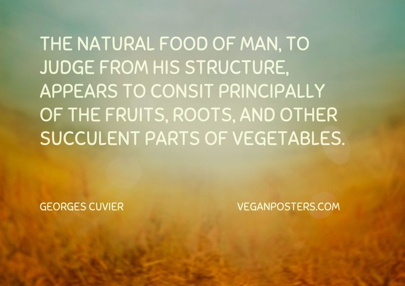 The natural food of man, to judge from his structure, appears to consit principally of the fruits, roots, and other succulent parts of vegetables.