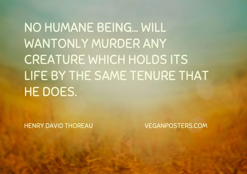 No humane being... will wantonly murder any creature which holds its life by the same tenure that he does.
