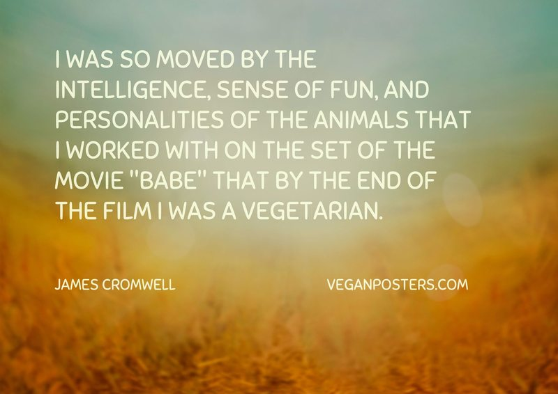 "I was so moved by the intelligence, sense of fun, and personalities of the animals that I worked with on the set of the movie ""Babe"" that by the end of the film I was a vegetarian."