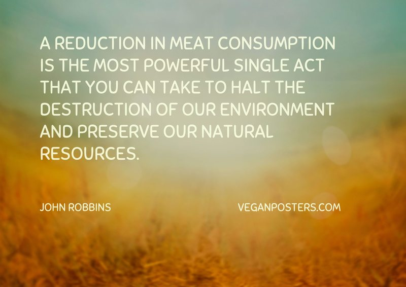 A reduction in meat consumption is the most powerful single act that you can take to halt the destruction of our environment and preserve our natural resources.