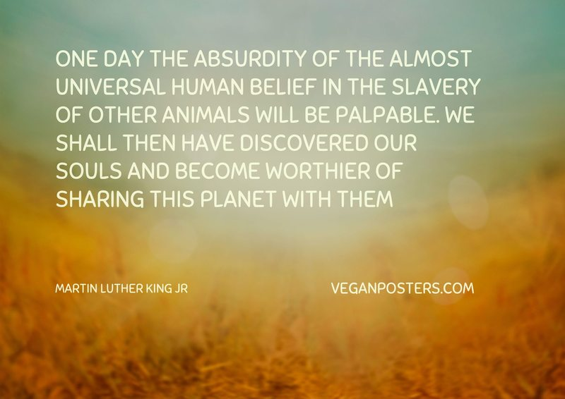 One day the absurdity of the almost universal human belief in the slavery of other animals will be palpable. We shall then have discovered our souls and become worthier of sharing this planet with them