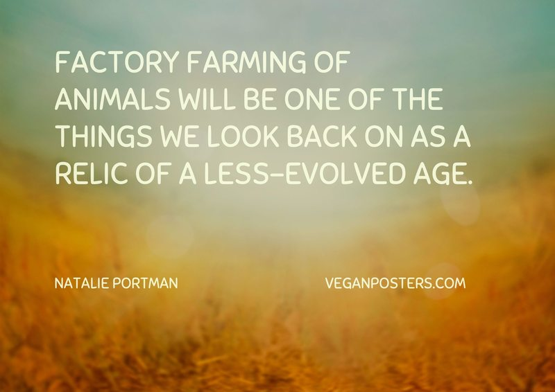 Factory farming of animals will be one of the things we look back on as a relic of a less-evolved age.