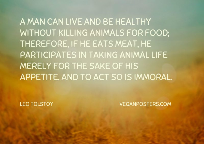 killing animals immoral Why meat is moral, and veggies are immoral and won't farms out there respond to this increased demand by killing more animals to send to grocery stores so aren't you responsible for the killing of those animals well not really.