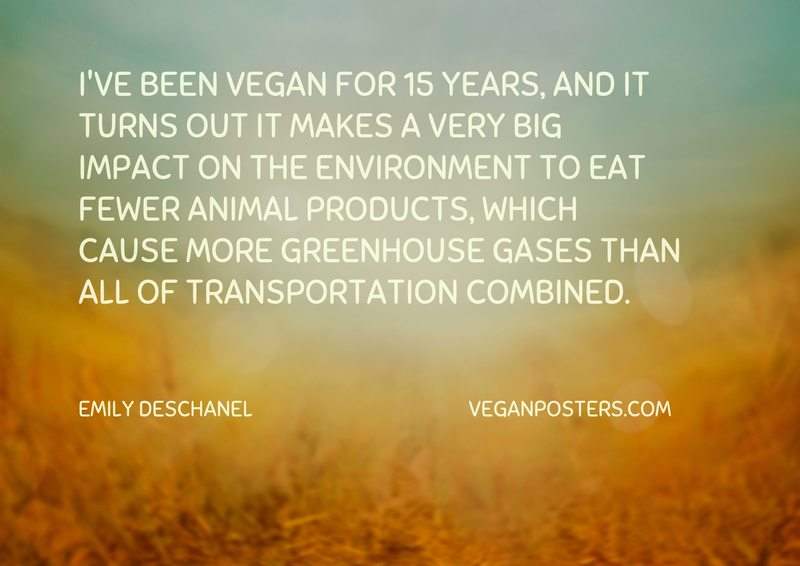 I've been vegan for 15 years, and it turns out it makes a very big impact on the environment to eat fewer animal products, which cause more greenhouse gases than all of transportation combined.