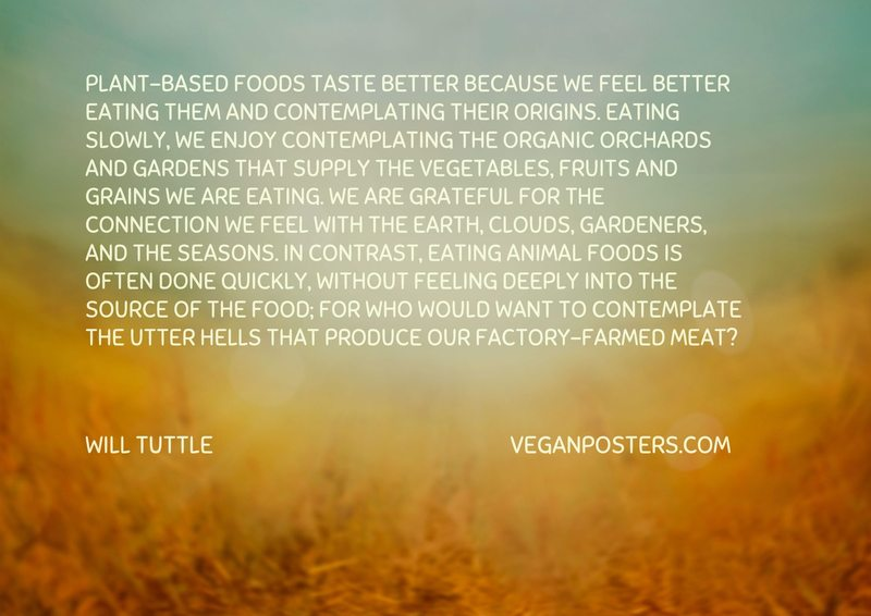 Plant-based foods taste better because we feel better eating them and contemplating their origins. Eating slowly, we enjoy contemplating the organic orchards and gardens that supply the vegetables, fruits and grains we are eating. We are grateful for the connection we feel with the earth, clouds, gardeners, and the seasons. In contrast, eating animal foods is often done quickly, without feeling deeply into the source of the food; for who would want to contemplate the utter hells that produce our factory-farmed meat?
