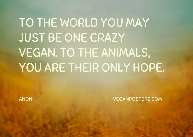 To the world you may just be one crazy vegan. To the animals, you are their only hope.