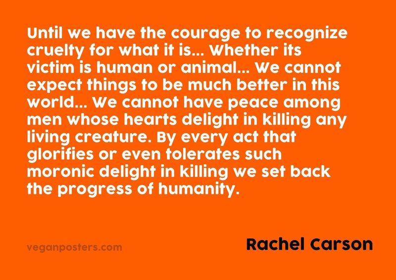 Until we have the courage to recognize cruelty for what it is... Whether its victim is human or animal... We cannot expect things to be much better in this world... We cannot have peace among men whose hearts delight in killing any living creature. By every act that glorifies or even tolerates such moronic delight in killing we set back the progress of humanity.