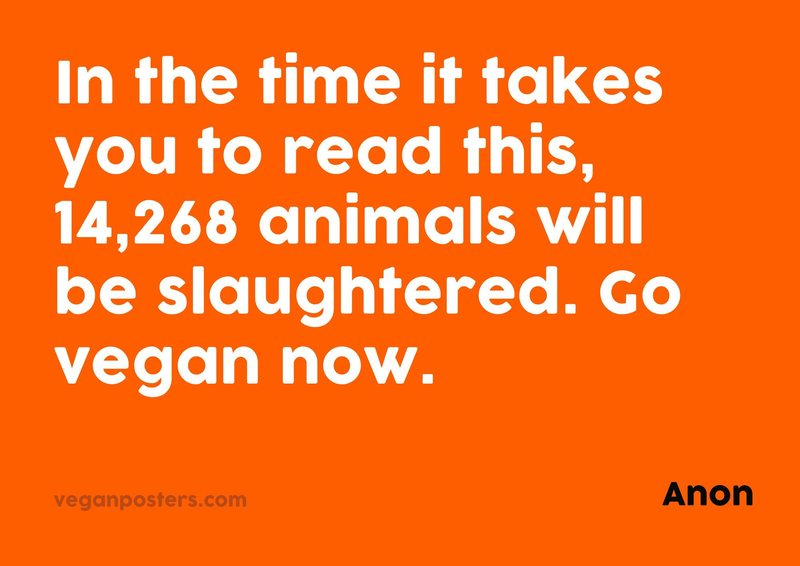 In the time it takes you to read this, 14,268 animals will be slaughtered. Go vegan now.