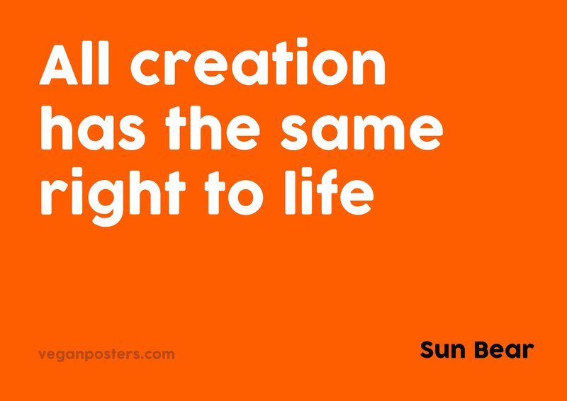 All creation has the same right to life