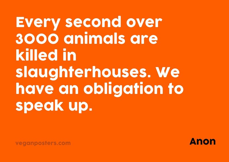 Every second over 3000 animals are killed in slaughterhouses. We have an obligation to speak up.