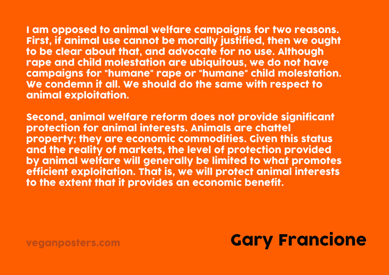 """I am opposed to animal welfare campaigns for two reasons. First, if animal use cannot be morally justified, then we ought to be clear about that, and advocate for no use. Although rape and child molestation are ubiquitous, we do not have campaigns for """"humane"""" rape or """"humane"""" child molestation. We condemn it all. We should do the same with respect to animal exploitation.   Second, animal welfare reform does not provide significant protection for animal interests. Animals are chattel property; they are economic commodities. Given this status and the reality of markets, the level of protection provided by animal welfare will generally be limited to what promotes efficient exploitation. That is, we will protect animal interests to the extent that it provides an economic benefit."""
