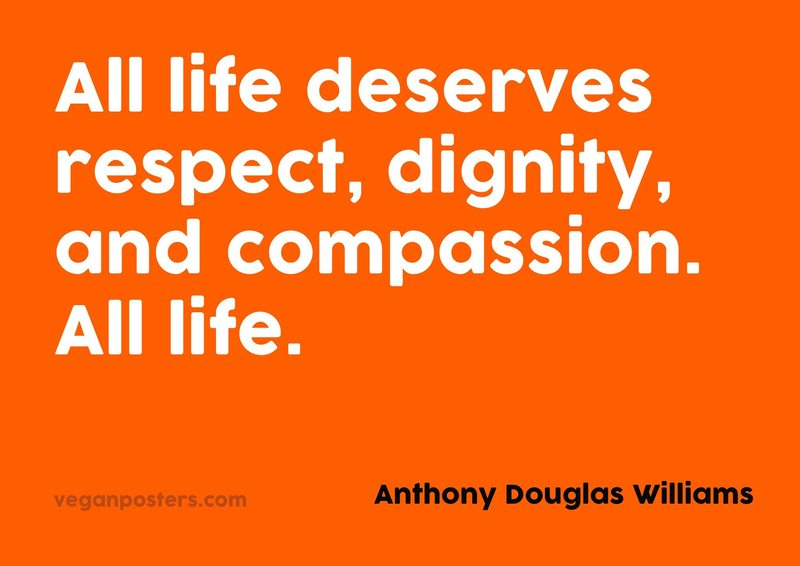 All Life Deserves Respect Dignity And Compassion All