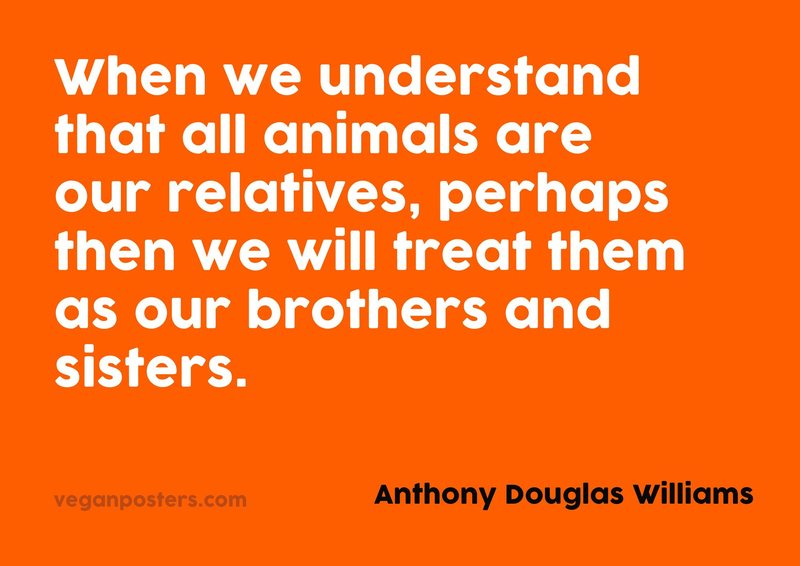 When we understand that all animals are our relatives, perhaps then we will treat them as our brothers and sisters.