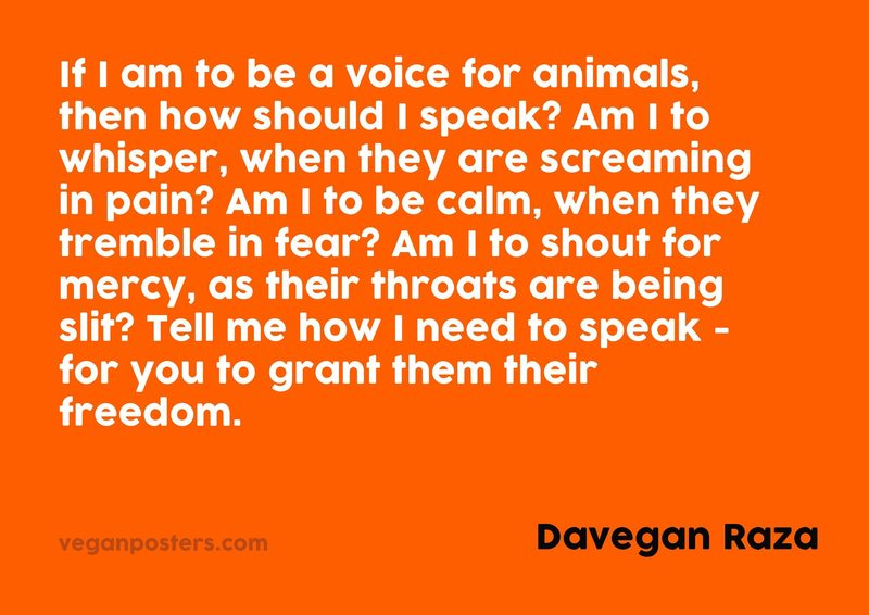 If I am to be a voice for animals, then how should I speak? Am I to whisper, when they are screaming in pain? Am I to be calm, when they tremble in fear? Am I to shout for mercy, as their throats are being slit? Tell me how I need to speak - for you to grant them their freedom.
