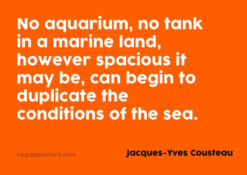 No aquarium, no tank in a marine land, however spacious it may be, can begin to duplicate the conditions of the sea.