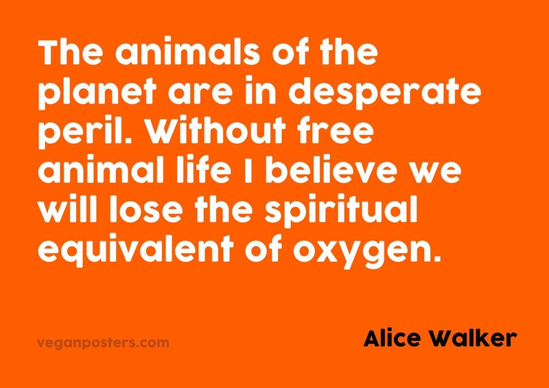 The animals of the planet are in desperate peril. Without free animal life I believe we will lose the spiritual equivalent of oxygen.