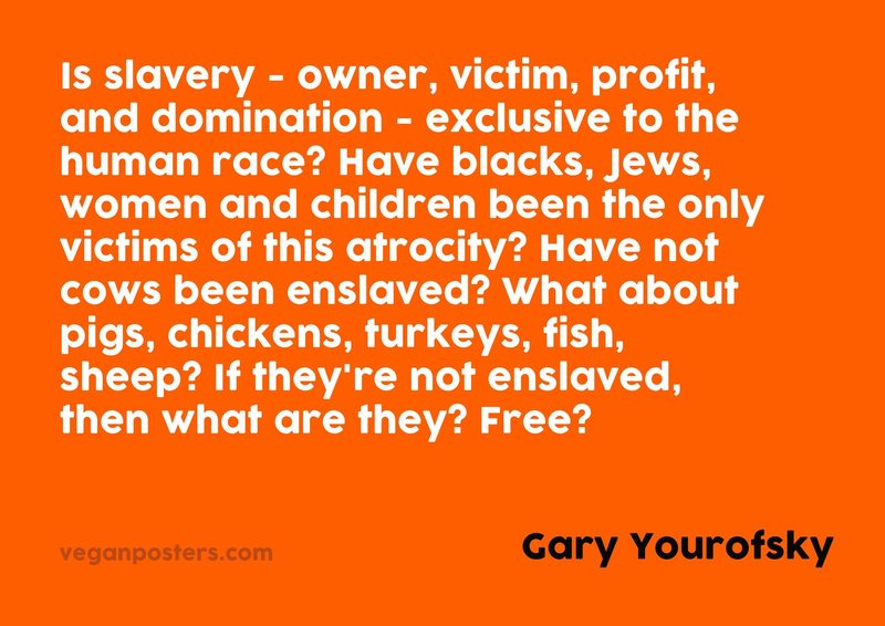 Is slavery - owner, victim, profit, and domination - exclusive to the human race? Have blacks, Jews, women and children been the only victims of this atrocity? Have not cows been enslaved? What about pigs, chickens, turkeys, fish, sheep? If they're not enslaved, then what are they? Free?