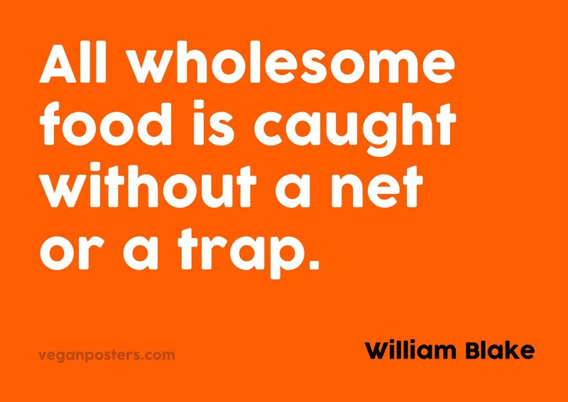 All wholesome food is caught without a net or a trap.