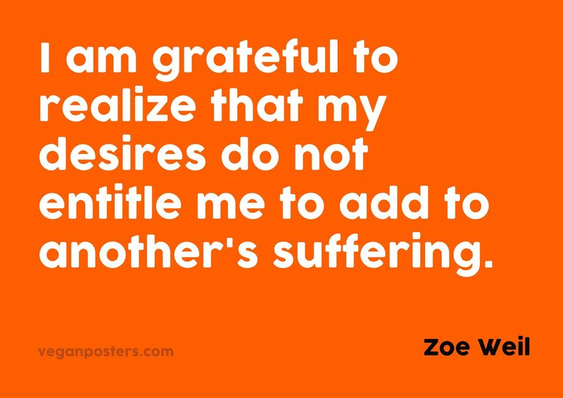 I am grateful to realize that my desires do not entitle me to add to another's suffering.
