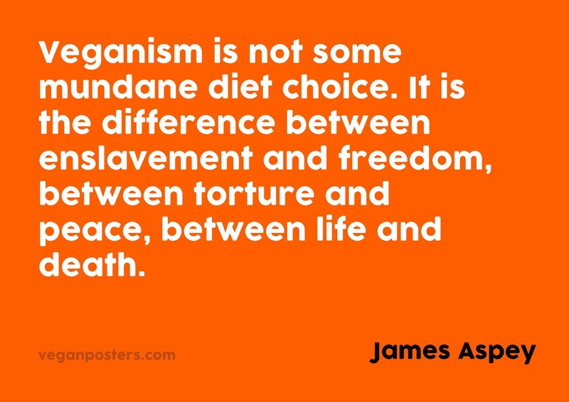 Veganism is not some mundane diet choice. It is the difference between enslavement and freedom, between torture and peace, between life and death.