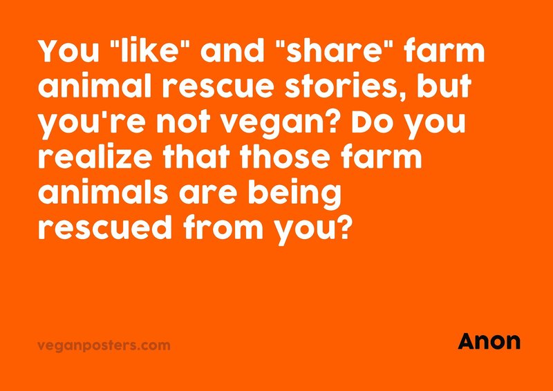 """You """"like"""" and """"share"""" farm animal rescue stories, but you're not vegan? Do you realize that those farm animals are being rescued from you?"""