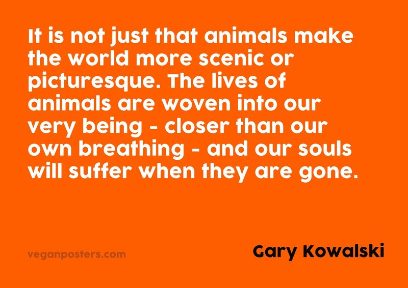 It is not just that animals make the world more scenic or picturesque. The lives of animals are woven into our very being - closer than our own breathing - and our souls will suffer when they are gone.