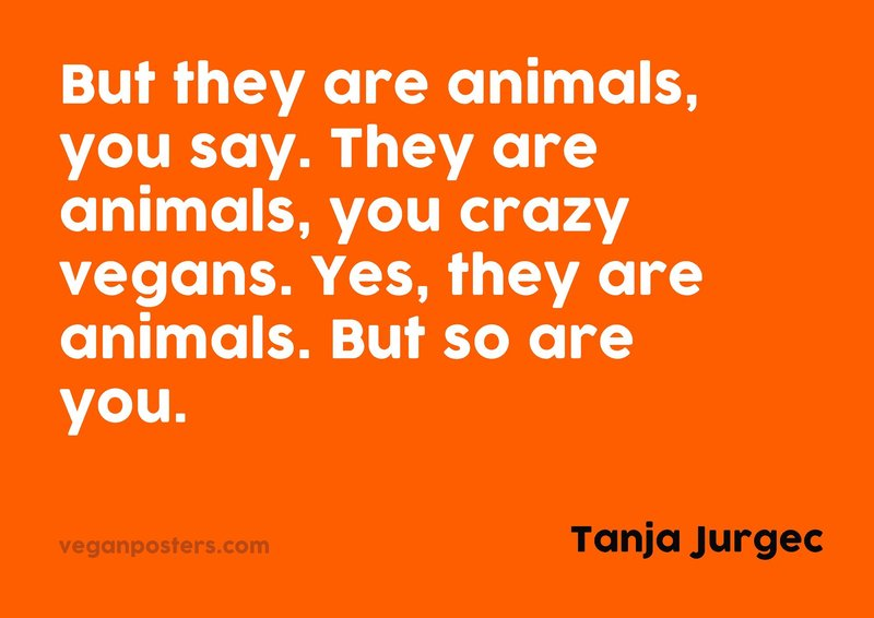 But they are animals, you say. They are animals, you crazy vegans. Yes, they are animals. But so are you.