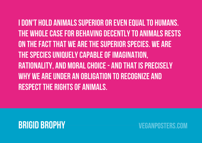 I don't hold animals superior or even equal to humans. The whole case for behaving decently to animals rests on the fact that we are the superior species. We are the species uniquely capable of imagination, rationality, and moral choice - and that is precisely why we are under an obligation to recognize and respect the rights of animals.