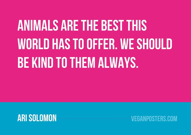 Animals are the best this world has to offer. We should be kind to them always.