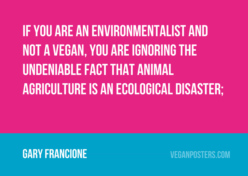 If you are an environmentalist and not a vegan, you are ignoring the undeniable fact that animal agriculture is an ecological disaster;