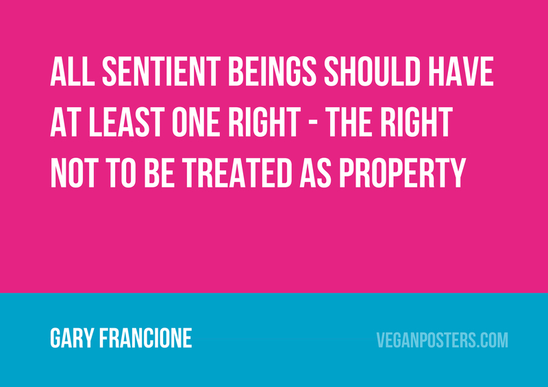 All sentient beings should have at least one right - the right not to be treated as property