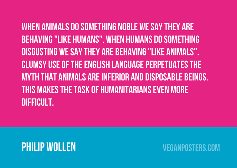 """When animals do something noble we say they are behaving """"like humans"""". When humans do something disgusting we say they are behaving """"like animals"""". Clumsy use of the English language perpetuates the myth that animals are inferior and disposable beings. This makes the task of humanitarians even more difficult."""