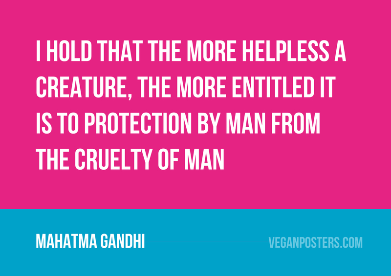 I hold that the more helpless a creature, the more entitled it is to protection by man from the cruelty of man
