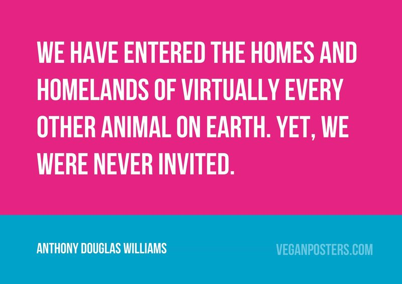 We have entered the homes and homelands of virtually every other animal on earth. Yet, we were never invited.