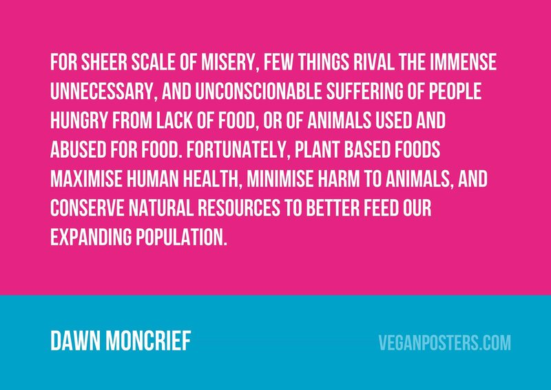 For sheer scale of misery, few things rival the immense unnecessary, and unconscionable suffering of people hungry from lack of food, or of animals used and abused for food. Fortunately, plant based foods maximise human health, minimise harm to animals, and conserve natural resources to better feed our expanding population.