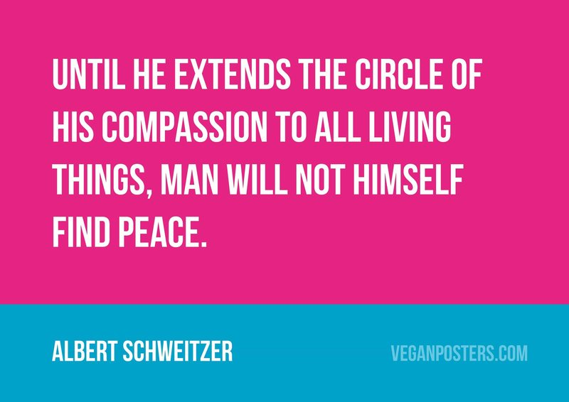 Until he extends the circle of his compassion to all living things, man will not himself find peace.