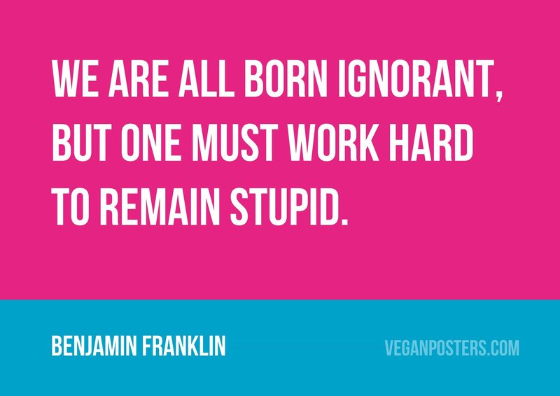 We are all born ignorant, but one must work hard to remain stupid.