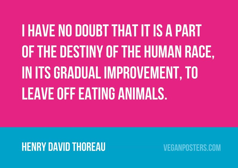 I have no doubt that it is a part of the destiny of the human race, in its gradual improvement, to leave off eating animals.