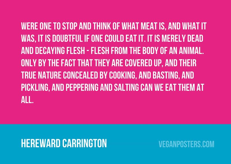 Were one to stop and think of what meat is, and what it was, it is doubtful if one could eat it. It is merely dead and decaying flesh - flesh from the body of an animal. Only by the fact that they are covered up, and their true nature concealed by cooking, and basting, and pickling, and peppering and salting can we eat them at all.