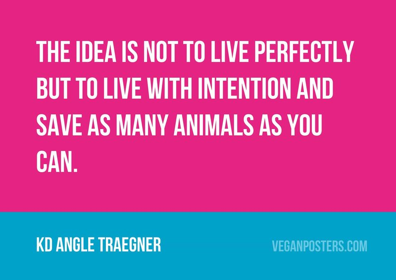 The idea is not to live perfectly but to live with intention and save as many animals as you can.