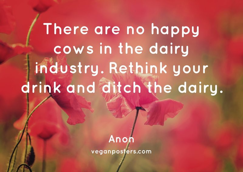There are no happy cows in the dairy industry. Rethink your drink and ditch the dairy.